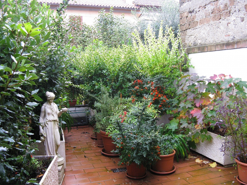 Terrazzi e giardini esperienze di luce - Alberelli da giardino ...